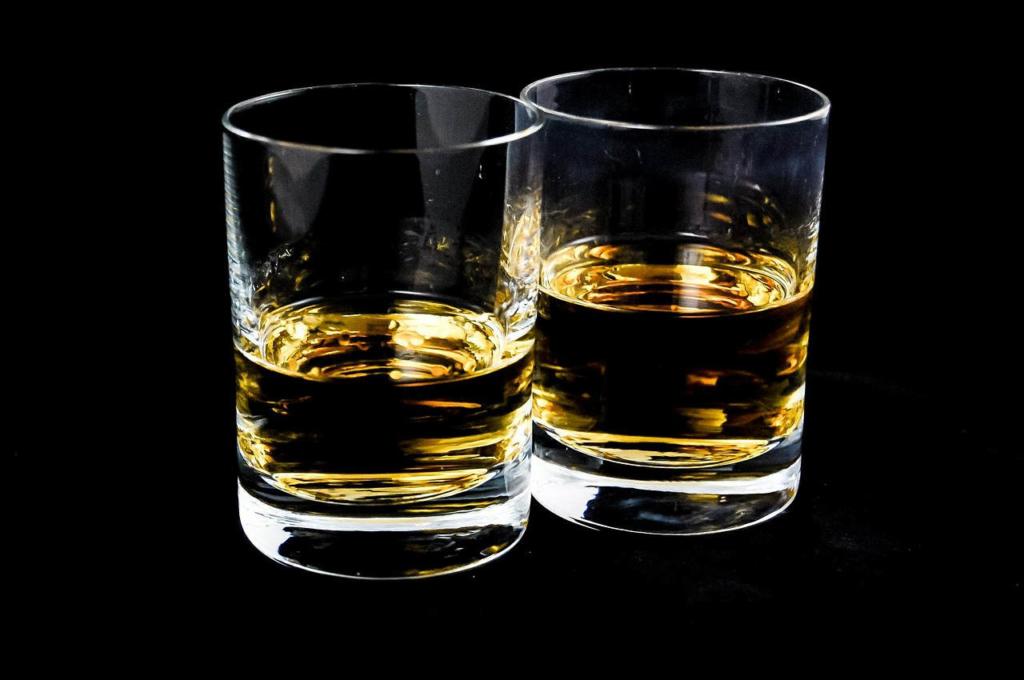 alkohol ist lebensbedrohlich für den besten Freund des Menschen