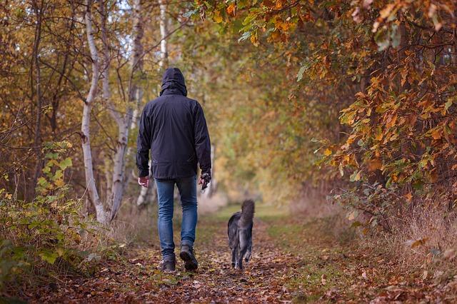 muss man mit einer Zecke am Hund zum Tierarzt