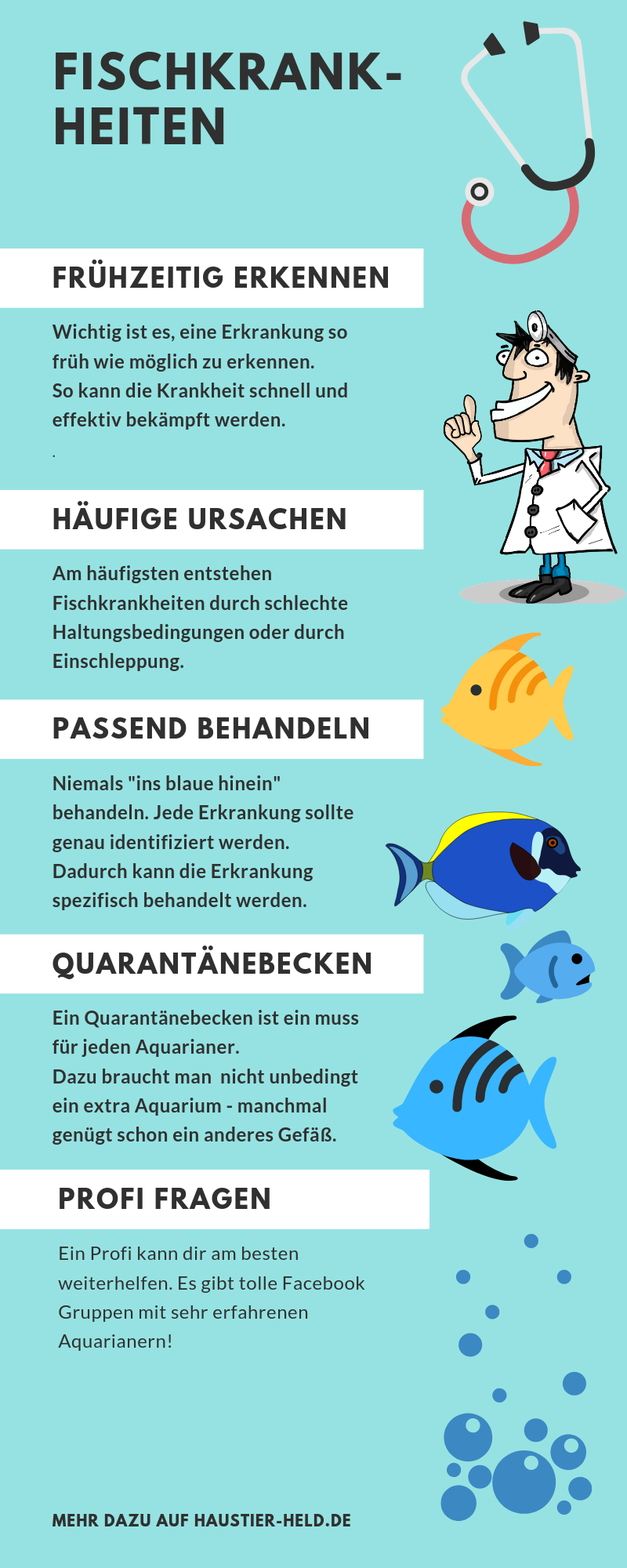 infografik für fischkrankheiten