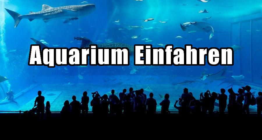 aquarium einfahren
